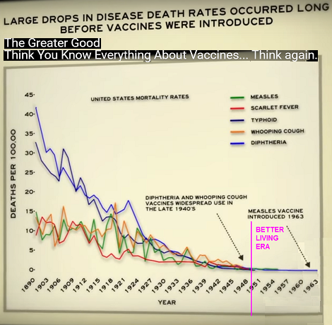 Past Forward History Of Vaccines